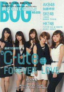 BOG cover